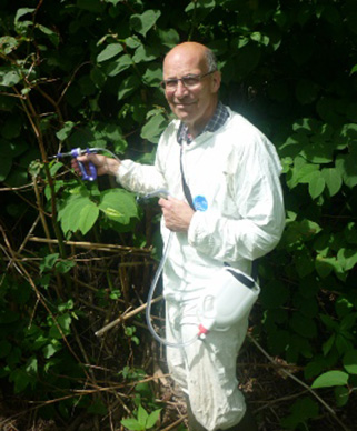 whats-on-injecting-japanese-knotweed